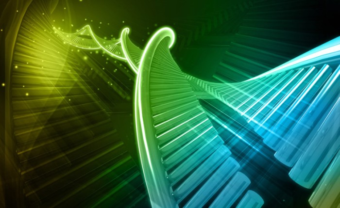 Semi-synthetic organism: Scientists create first living organism that transmits added letters in DNA 'alphabet' Credit: © abhijith3747 / Fotolia