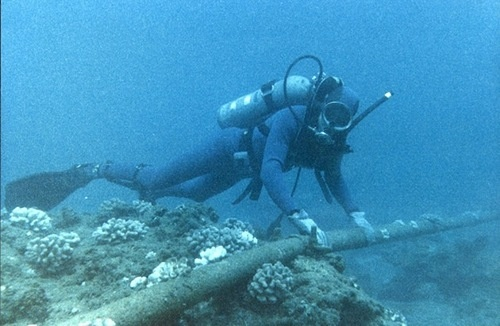 diver with undersea cable